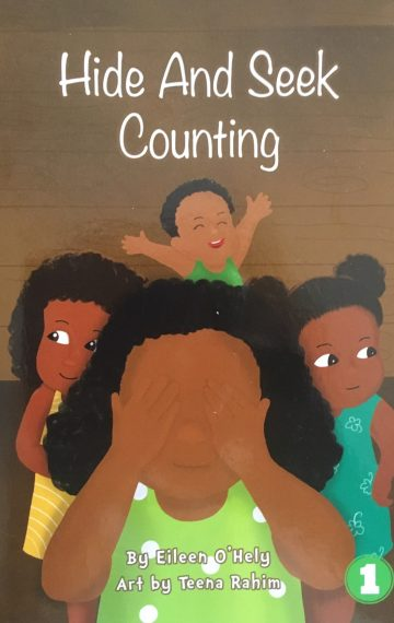 Hide and Seek Counting